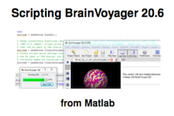 ScriptingBrainVoyager206FrontCover