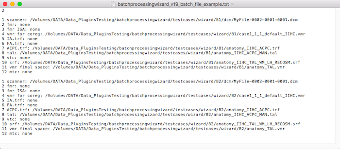 batchprocessingwizard v19 batch file example